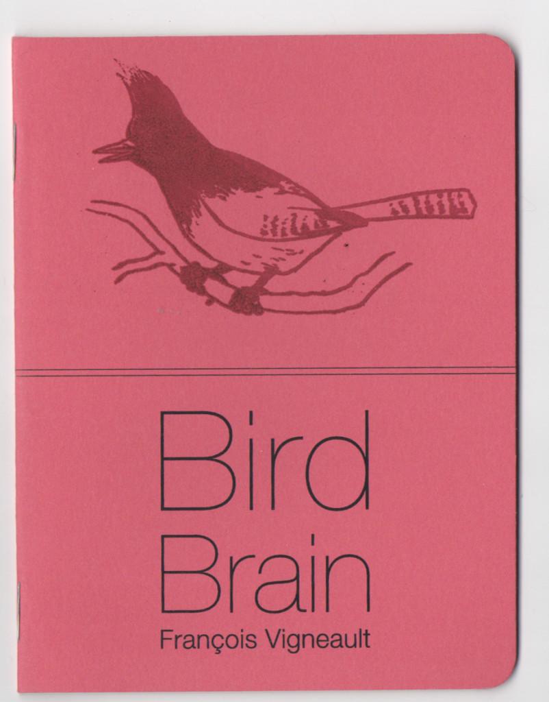 BirdBrain3
