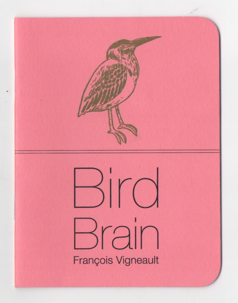 BirdBrain5